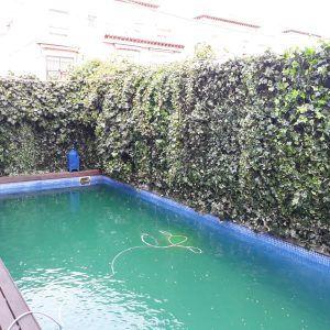 piscina decoración artificial