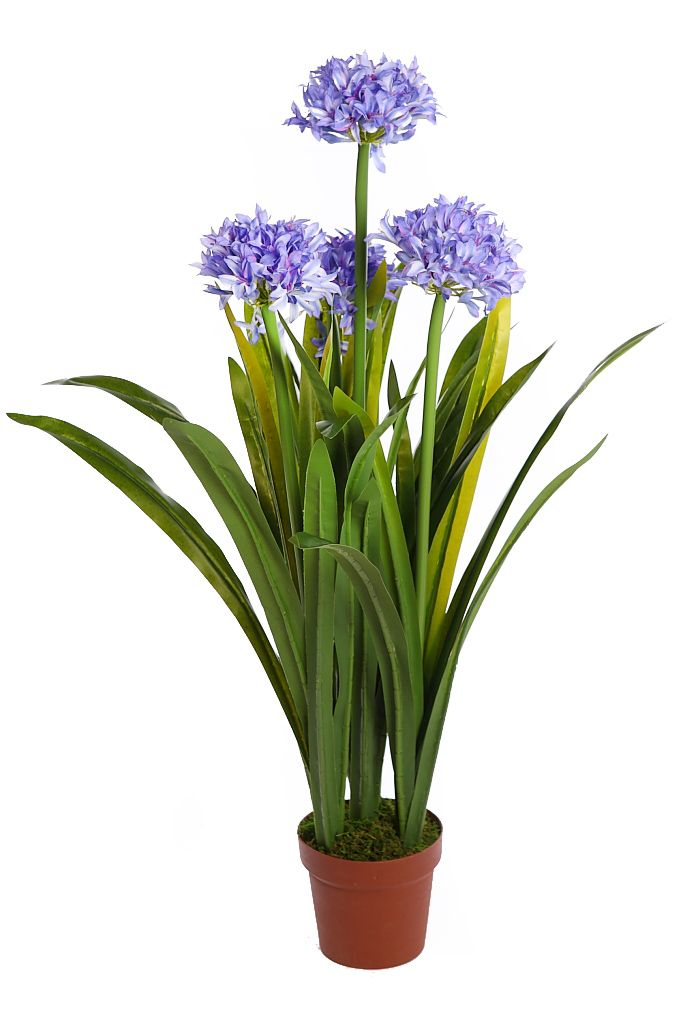 planta artificial
