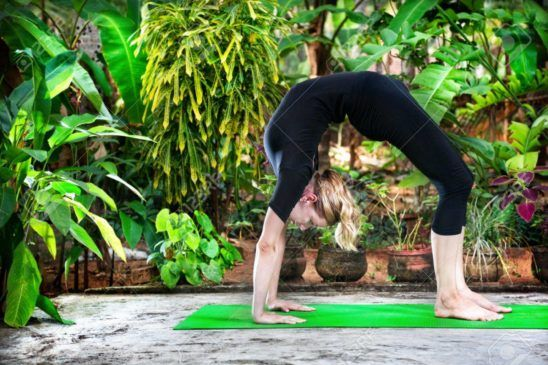 yoga con plantas